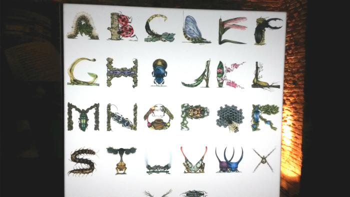Arthropod Alphabet_Paula Duta