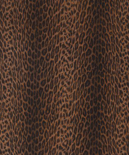 Decorative sticky back plastic African Leopard