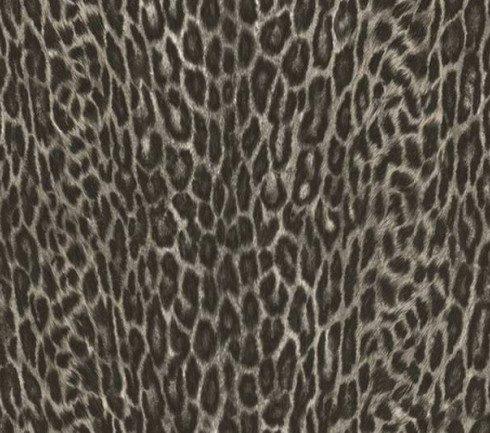 Decorative sticky back plastic Asian Leopard