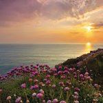Fototapet Natura - Apus de Soare pe Mare 8-901