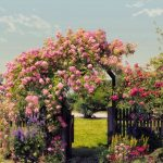 Fototapet Natura - Bolta de Trandafiri 8-936