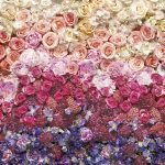 Fototapet Floral Intense 8-965