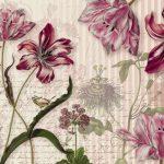 Fototapet Floral - Miros de Flori Merian Produs