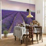 fototapet-flori-lavanda-provence-xxl4-036