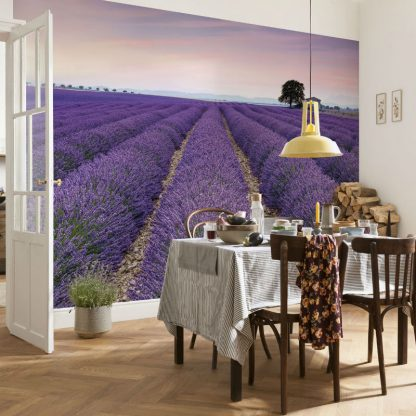 Fototapet Lavanda Provence - Catalog