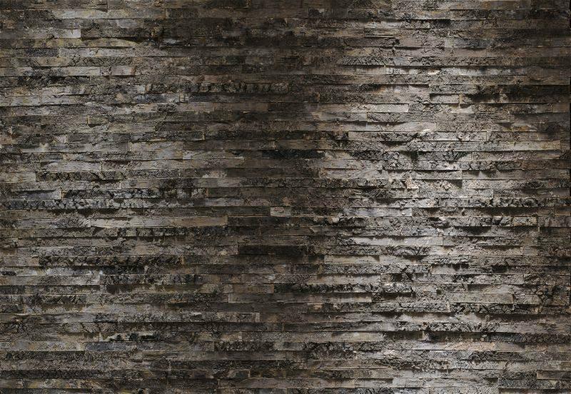 Fototapet lemn scoarta de mesteacan