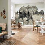 Fototapet Elefant African Vlies Interior