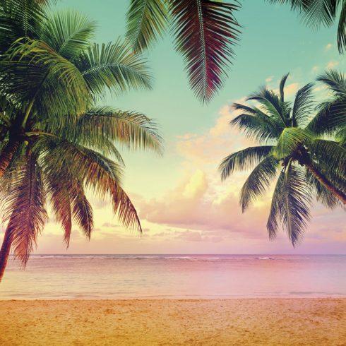 Fototapet Natura Apus de Soare la Miami 8-967