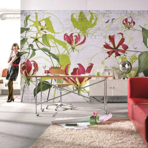 Fototapet floral - Crini Gloriosa Superba Catalog