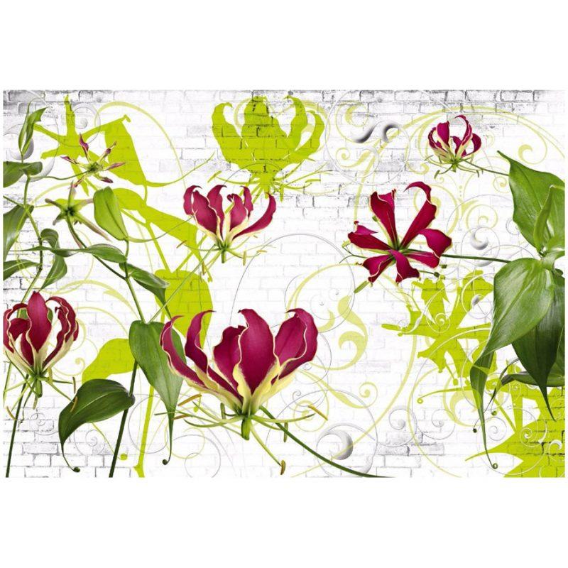 Fototapet floral - Crini Gloriosa Superba