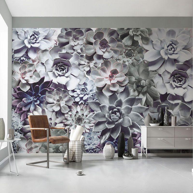 Fototapet floral Echeveria Shades