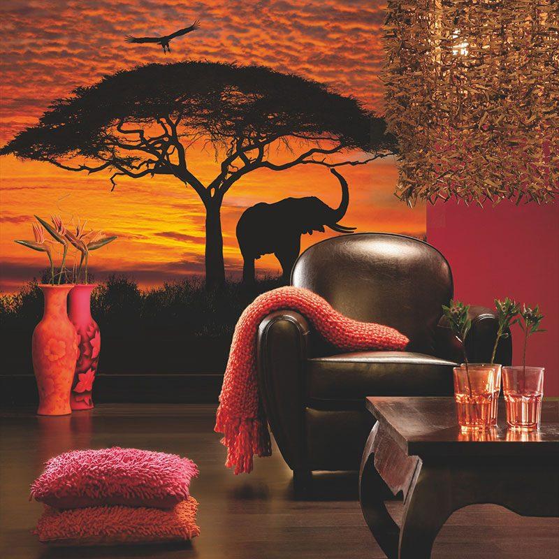 Fototapet natura – Apus in Africa