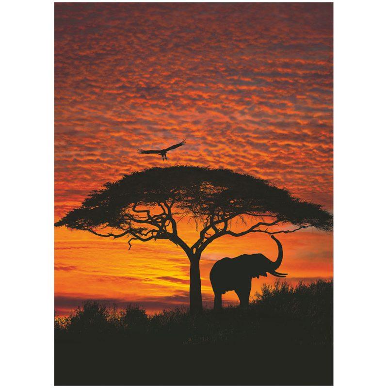 Fototapet natura - Apus in Africa