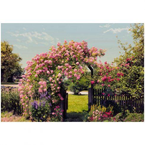 Fototapet natura - Bolta de trandafiri