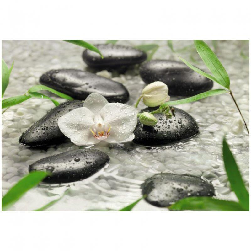 Fototapet orhidee - Puritatea Albului
