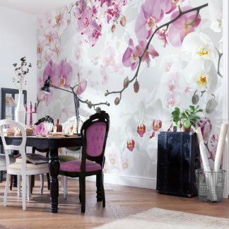 Fototapet orhidee albe si roz – Ispita Florilor - Catalog