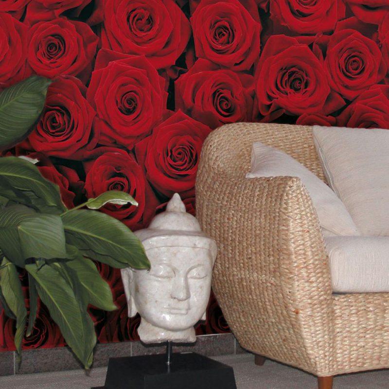Fototapet trandafiri rosii - Impuls pasional
