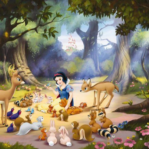 Fototapet Alba ca Zapada - Noaptea Disney