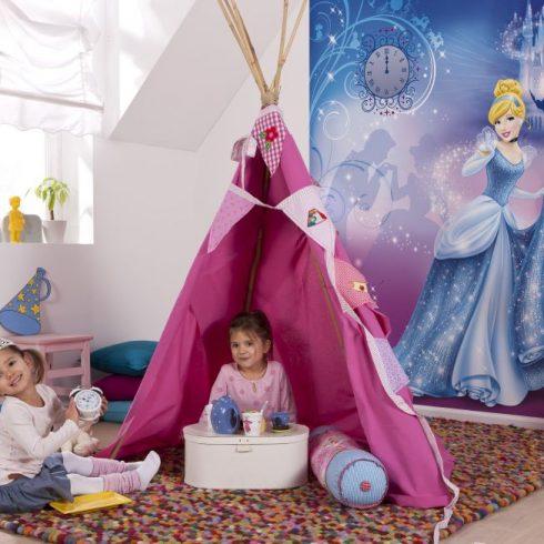 Fototapet Cenusareasa - Noaptea Disney Komar