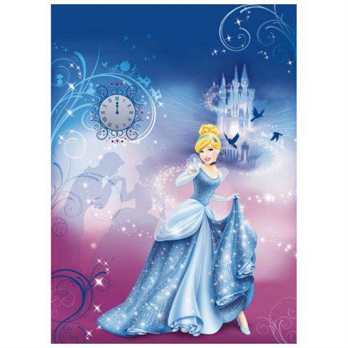 Fototapet Cenusareasa – Noaptea Disney - Catalog