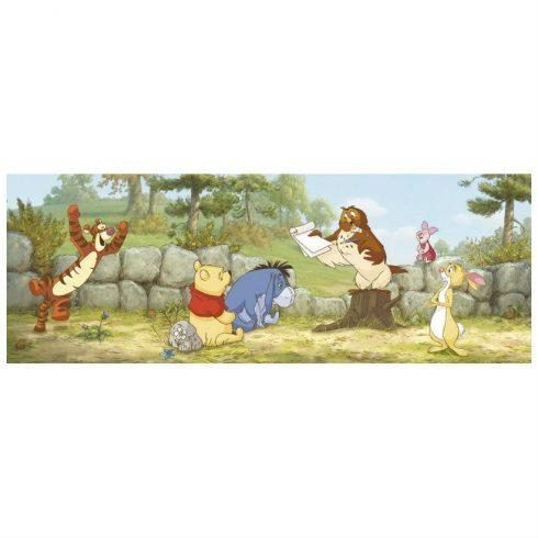 Fototapet Copii Winnie the Pooh – Prima Lectie - Catalog