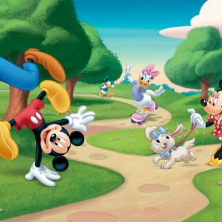 Fototapet Mickey Mouse - Distractie in Parc