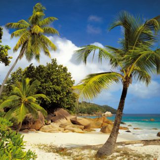 Fototapet Natura - Plaja Praslin Seychelle