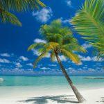 Fototapet Plaja - Insula de Corali Maldive