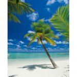 Fototapet Plaja - Insula de Corali Maldive Catalog