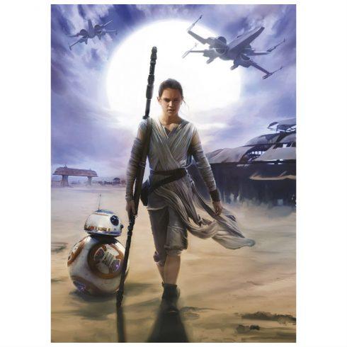 Fototapet Star Wars – Neinfricata Rey - Catalog