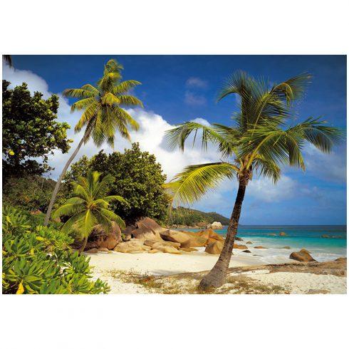 Fototapet natura Plaja Praslin