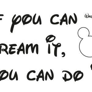 Sticker Disney - You can do it pachet