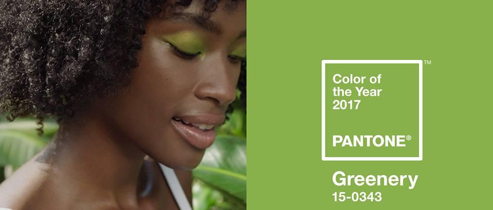 Pantone - Culoarea anului 2017