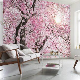 Fototapet Floral - Inflorirea Ciresilor Vlies Interior