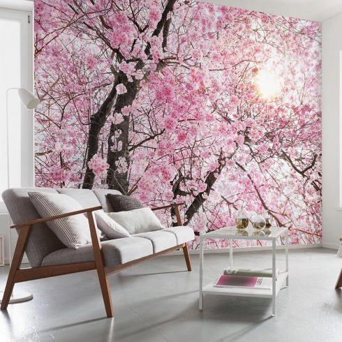 Fotoapet flori de cires Splendoare