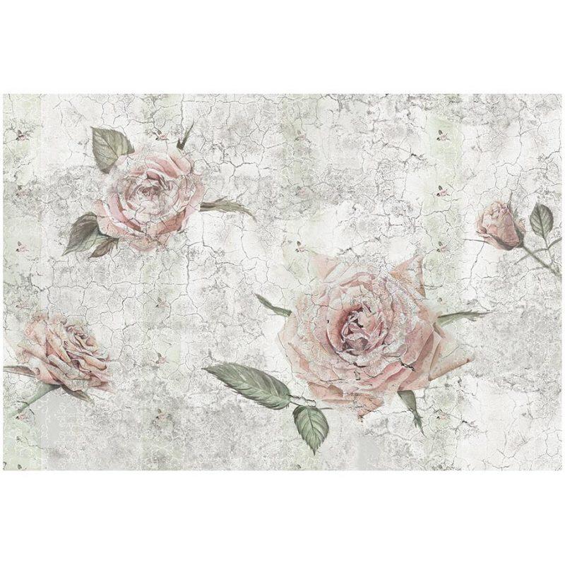 Fototapet trandafiri Vintage Rose