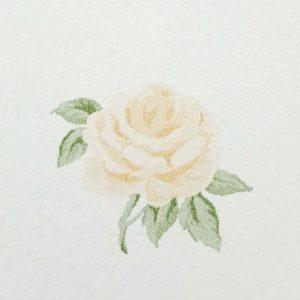 Tapet Shabby Chic Alice detaliu trandafir bej
