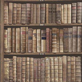 Tapet Vintage Carti Biblioteca Stejar Oxford