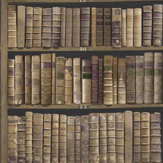 Tapet Vintage Carti Biblioteca Mahon