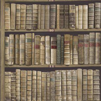 Tapet Vintage Carti Biblioteca Nuc