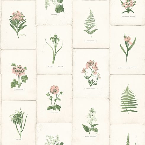 Tapet Oxford II Botanica Roz