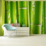 Fototapet bambus Catalog