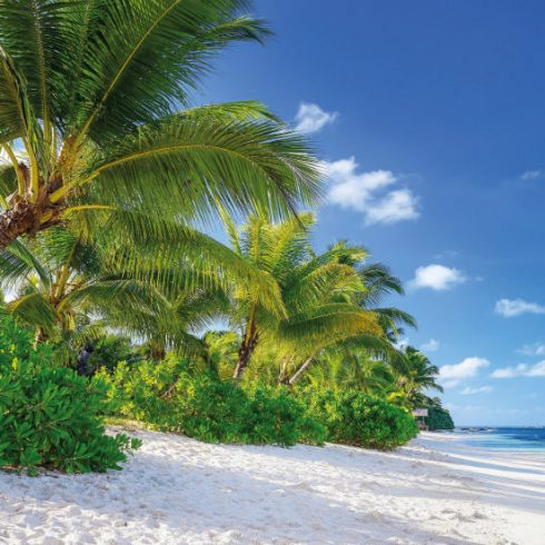 Fototapet Insula Reunion Produs