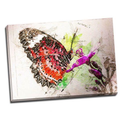 Tablou fluture - Botanica in culori - Aspect zona luminata