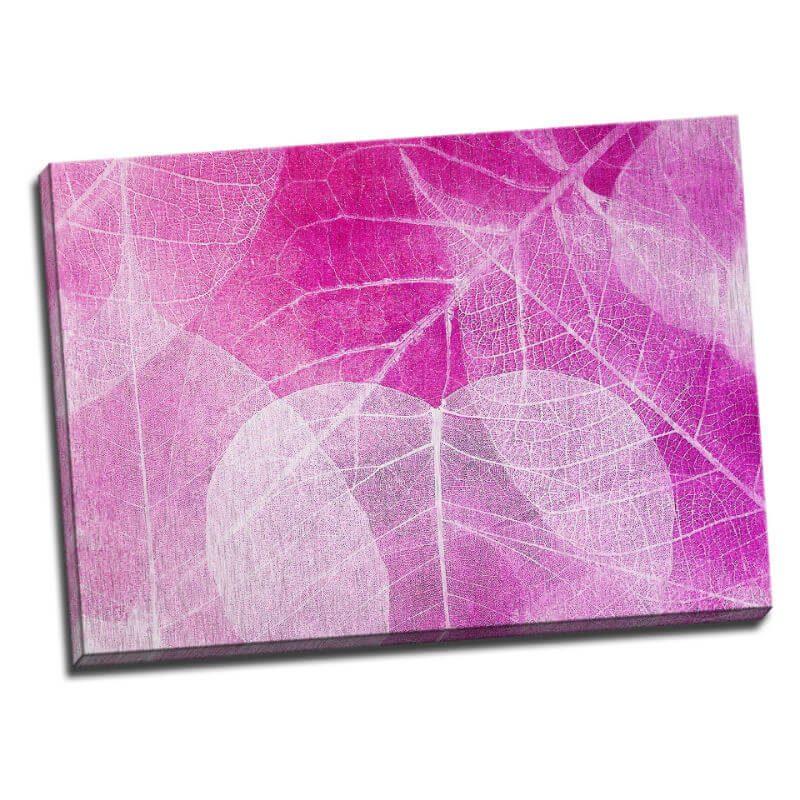 Tablou roz cu frunze albe - Aspect zona luminata
