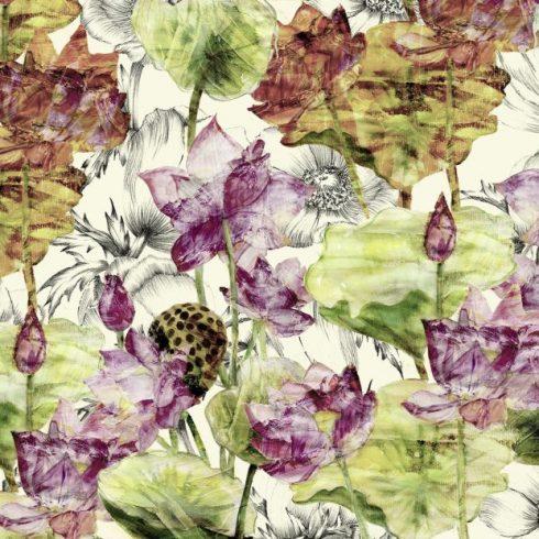 Fototapet flori de lotus - Catalog
