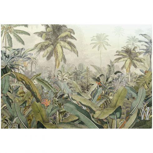 Fototapet jungla tropicala