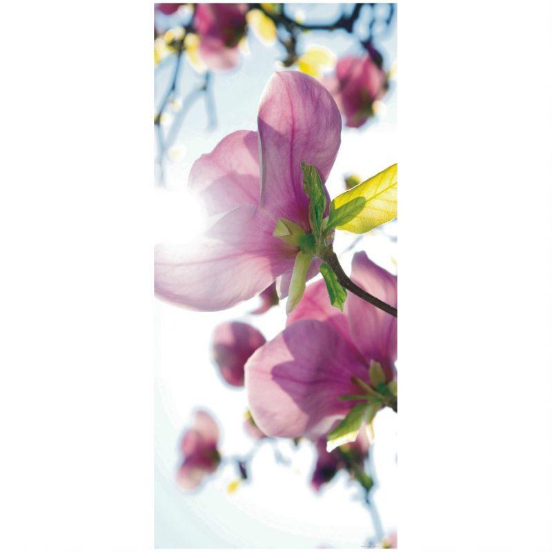 Fototapet cu magnolii pentru usa - Catalog