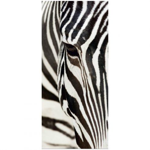 Fototapet de usa cu zebra - Catalog
