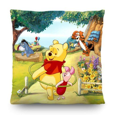 Perna copii Winnie the Pooh